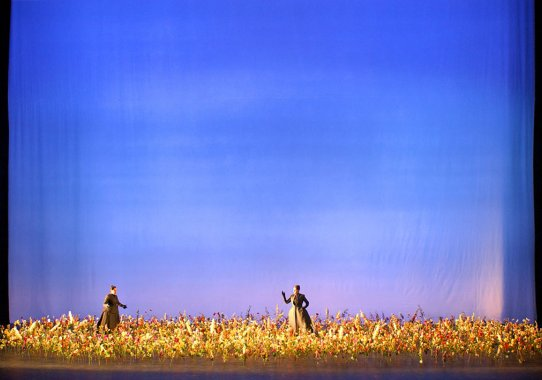 Les Boreades Paris Opera